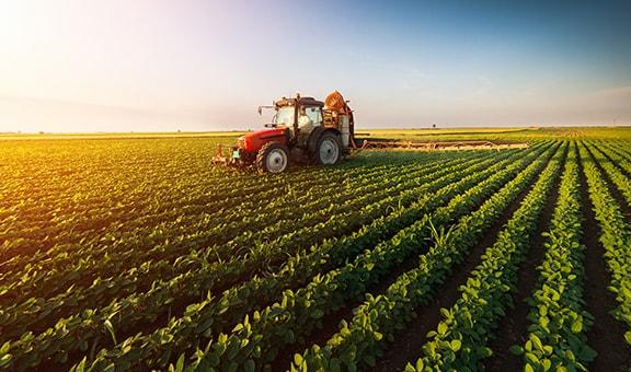 Herramientas agricultura