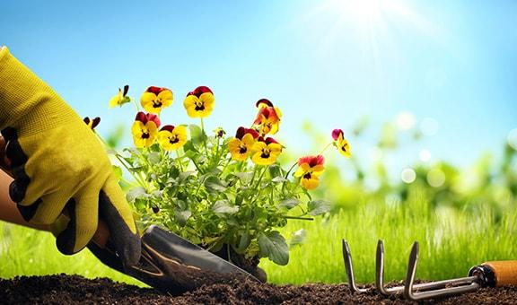 Material de jardinería